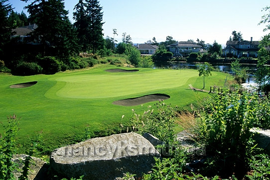 Photo of Fairwinds Golf Course 3