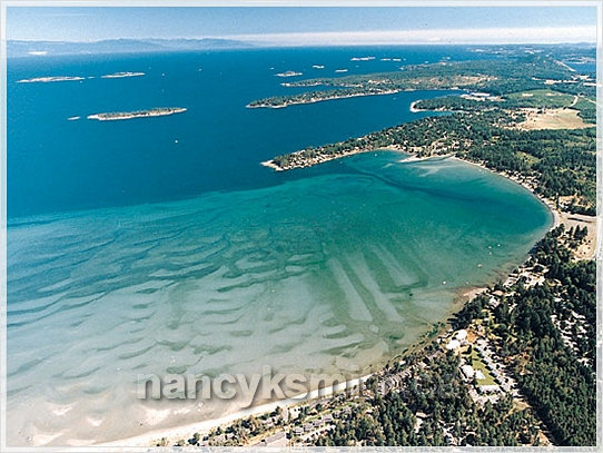 Real Estate Parksville Vancouver Island