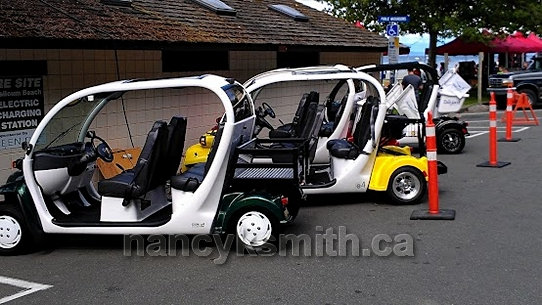 Photo of Electric Shuttle Cars