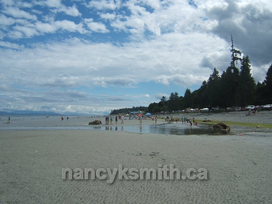 Photo of Low Tide Beach Day Event