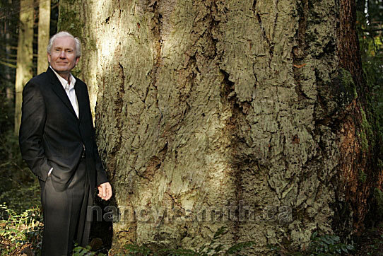 Tom Whitfield and a Huge Tree